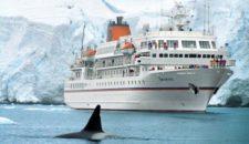 MS Bremen: Crew Mitglied von Eisbär attackiert – Krankenhaus!