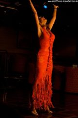 Ireen Sheer - Konzert auf MS Delphin April 2012 29