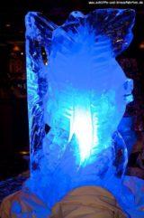 Gala-Mitternachtsbueffett MS Delphin Partynacht 261