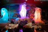 Gala-Mitternachtsbueffett MS Delphin Partynacht 264