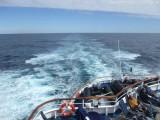 Seetag - Heckwelle MS Delphin