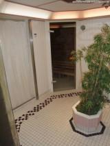 Wellnessbereich - Sauna & Dusche