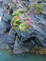 Fjordtour - Nuuk per Boot (2)