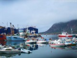 Hafen von Sisimiut (5)
