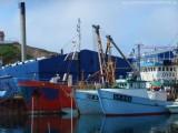 Hafen von Sisimiut (7)