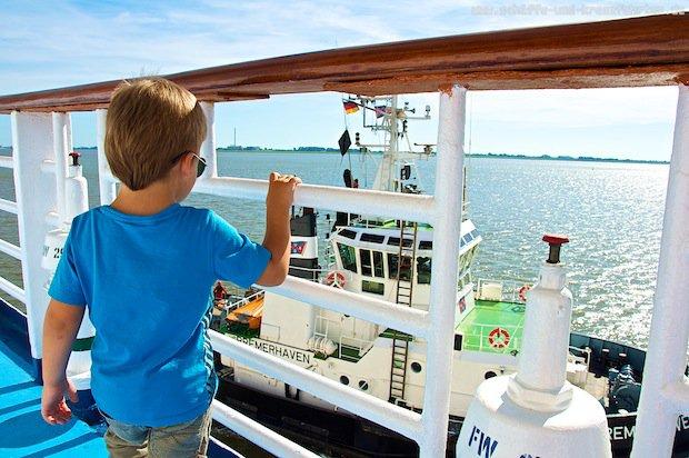 Leon auf der Princess Daphne in Bremerhaven