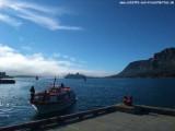 Tenderboot & MS Delphin
