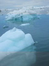 Zodiactour im Ilulissat  Eisfjord (130)