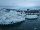 Zodiactour im Ilulissat  Eisfjord (30)