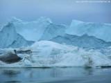 Zodiactour im Ilulissat  Eisfjord (42)