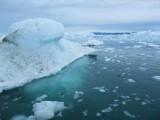 Zodiactour im Ilulissat  Eisfjord (45)