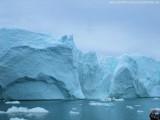 Zodiactour im Ilulissat  Eisfjord (85)