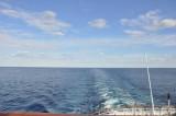 MS Delphin 02