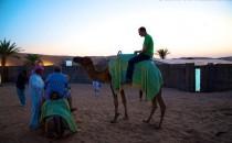 AIDAstella: Südafrika Safari & Orient Kreuzfahrt inkl. Flug