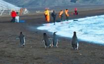 Deception Island: Reisebericht Antarktis mit MS Delphin