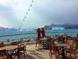 Eisberge vor Grytviken