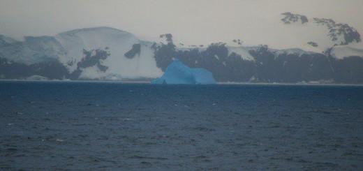 Elephant Island - MS Delphin 9