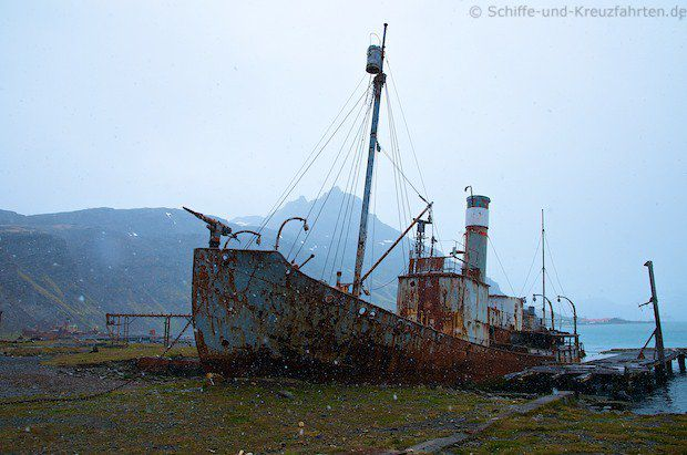 "Das heruntergekommen Walfangboot ""Petrel"" in Grytviken"