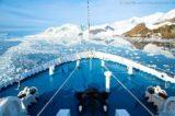 Paradise Bay - MS Delphin 10