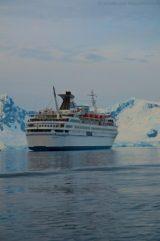 Paradise Bay - MS Delphin 27