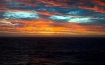 Seetage nach Südgeorgien: Reisebericht Antarktis mit MS Delphin