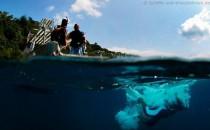 AIDA Tauchausflüge: Mit AIDA die Unterwasserwelt erkunden