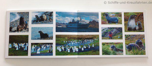 Antarktis-Fotobuch - Jason Harbour