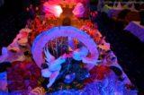 Gala-Mitternachtsbuffet - Partynacht MS Delphin 2013 1