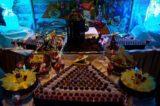 Gala-Mitternachtsbuffet - Partynacht MS Delphin 2013 7
