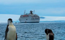 MS Delphin ist wieder in Fahrt – Alteza Cruises