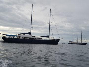 Sea Bird und Sea Star / Bildquelle: Schiffe und Kreuzfahrten Marcel Brech