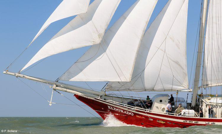 Segelschiff Eldorado / © P.Bollens (BowLine)