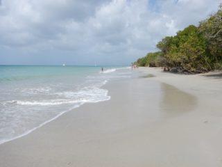 Anse Moustique - Martinique