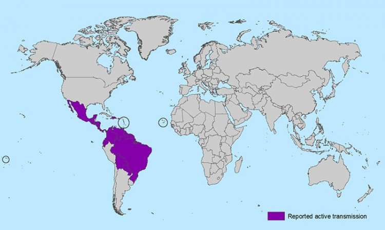 Kreuzfahrt Regionen mit Zika Virus © CDC (Centers for Disease Control and Prevention)