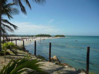 Guamache / Isla Margarita - Venezuela