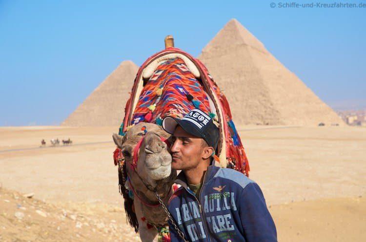 Kameltreiber küsst sein Kamel vor den Pyramiden von Gizeh