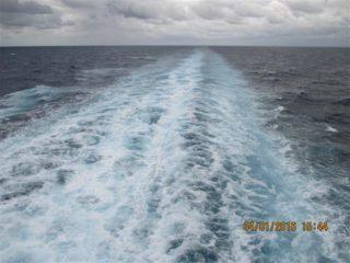seetag-navigator-of-the-seas-01