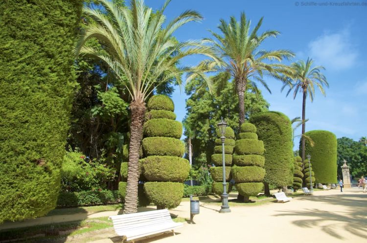 Park Genovés Cádiz