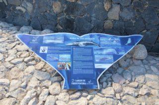 mein-schiff-4-reisebericht-fuerteventura-117