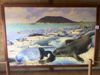 mein-schiff-4-reisebericht-fuerteventura-146