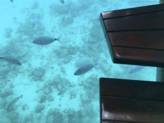 mein-schiff-4-reisebericht-fuerteventura-19