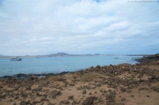 mein-schiff-4-reisebericht-fuerteventura-31
