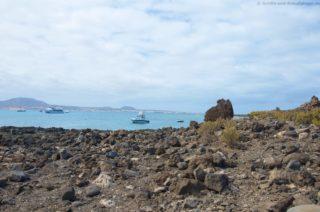 mein-schiff-4-reisebericht-fuerteventura-78