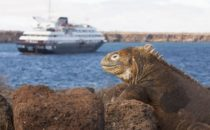 Galapagos Kreuzfahrt mit Silver Galapagos inkl. Hotel und Flug (All Inclusive)
