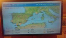 Costa Mediterranea hängt in Valencia fest – Hafen gesperrt