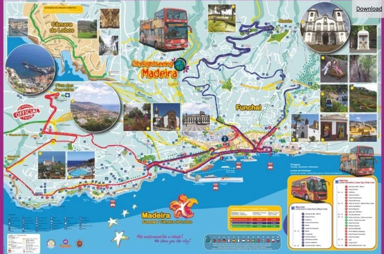 Hop On Hop Off Bus Funchal © CitySightseeing