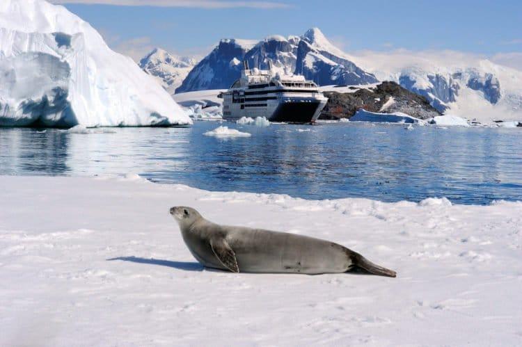 Ponant und National Geographics machen gemeinsame Sache © Ponant Yachtkreuzfahrten