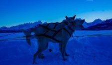 aida-winter-im-hohen-norden-7