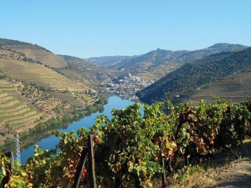 Douro-Landschaft-1