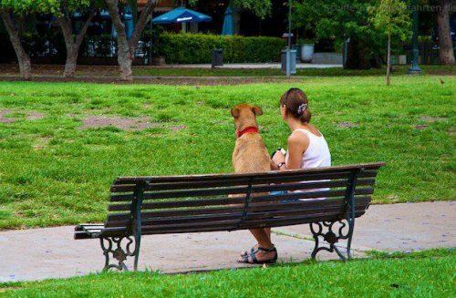 Hund und Frau im Park in Buenos Aires